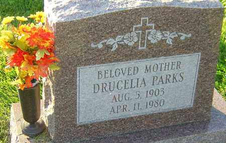 PARKS, DRUCELIA - Franklin County, Ohio | DRUCELIA PARKS - Ohio Gravestone Photos