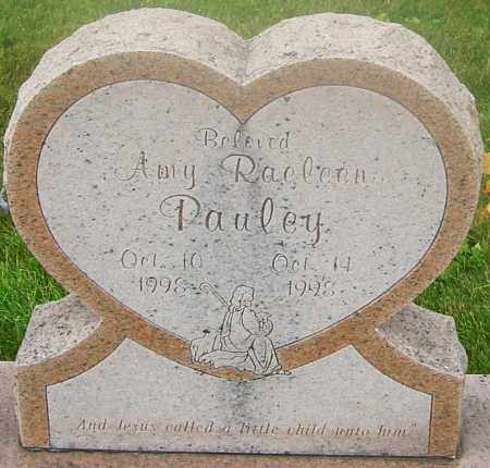PAULEY, AMY RAELEEN - Franklin County, Ohio | AMY RAELEEN PAULEY - Ohio Gravestone Photos