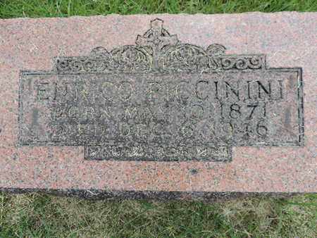 PICCININI, ENRICO - Franklin County, Ohio | ENRICO PICCININI - Ohio Gravestone Photos