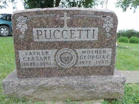 PUCCETTI, CEASARE - Franklin County, Ohio | CEASARE PUCCETTI - Ohio Gravestone Photos