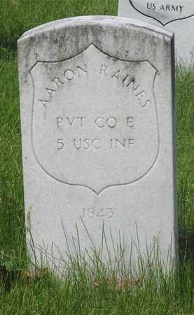 RAINES, AARON - Franklin County, Ohio | AARON RAINES - Ohio Gravestone Photos