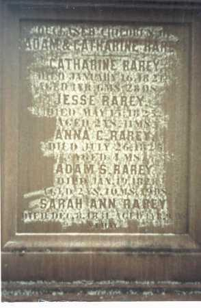 RAREY CHILDREN, ADAM & MARY CATHERINE - Franklin County, Ohio | ADAM & MARY CATHERINE RAREY CHILDREN - Ohio Gravestone Photos