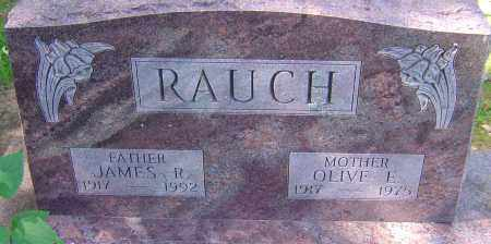 RAUCH, JAMES R - Franklin County, Ohio | JAMES R RAUCH - Ohio Gravestone Photos
