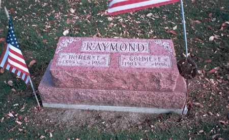 RAYMOND, GOLDIE E. - Franklin County, Ohio | GOLDIE E. RAYMOND - Ohio Gravestone Photos