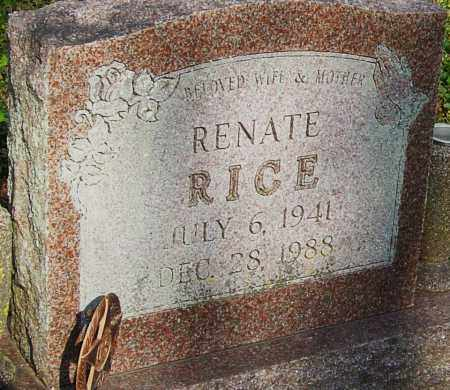 RICE, RENATE - Franklin County, Ohio | RENATE RICE - Ohio Gravestone Photos
