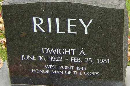 RILEY, DWIGHT - Franklin County, Ohio | DWIGHT RILEY - Ohio Gravestone Photos