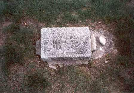 ROE, LOUISA - Franklin County, Ohio | LOUISA ROE - Ohio Gravestone Photos