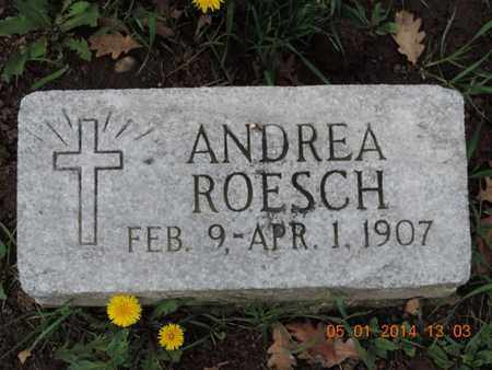 ROESCH, ANDREA - Franklin County, Ohio | ANDREA ROESCH - Ohio Gravestone Photos
