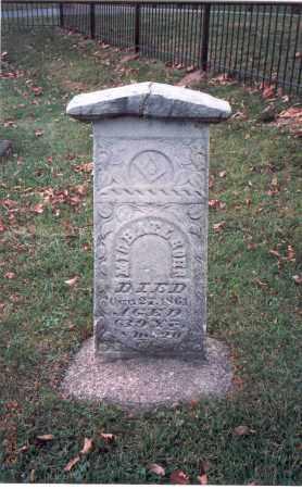 ROHR, MICHAEL - Franklin County, Ohio   MICHAEL ROHR - Ohio Gravestone Photos