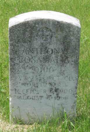 ROSAMALIA, ANTHONY - Franklin County, Ohio | ANTHONY ROSAMALIA - Ohio Gravestone Photos