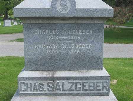 SALZGEBER, CHARLES - Franklin County, Ohio | CHARLES SALZGEBER - Ohio Gravestone Photos