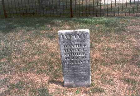 SARBER, INFANT - Franklin County, Ohio | INFANT SARBER - Ohio Gravestone Photos