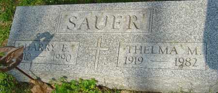 SAUER, HARRY E - Franklin County, Ohio | HARRY E SAUER - Ohio Gravestone Photos
