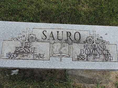 SAURO, DOMINICK - Franklin County, Ohio | DOMINICK SAURO - Ohio Gravestone Photos
