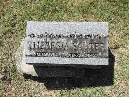 SAUTER, THERESIA - Franklin County, Ohio | THERESIA SAUTER - Ohio Gravestone Photos