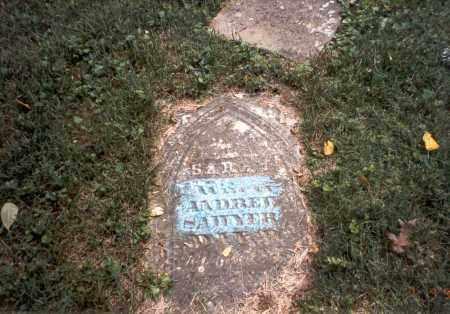 SAWYER, SARAH - Franklin County, Ohio | SARAH SAWYER - Ohio Gravestone Photos