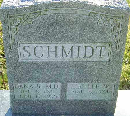 SCHMIDT, DANA M - Franklin County, Ohio | DANA M SCHMIDT - Ohio Gravestone Photos