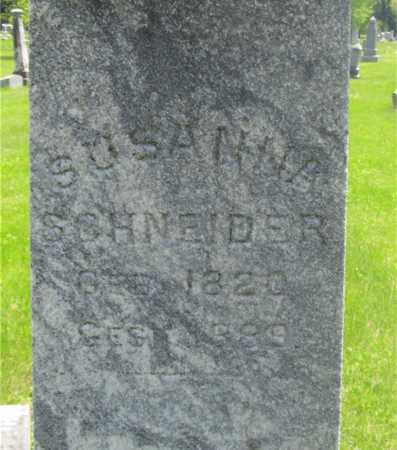 SCHNEIDER, SUSANNA - Franklin County, Ohio | SUSANNA SCHNEIDER - Ohio Gravestone Photos