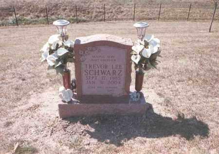 SCHWARZ, TREVOR LEE - Franklin County, Ohio | TREVOR LEE SCHWARZ - Ohio Gravestone Photos