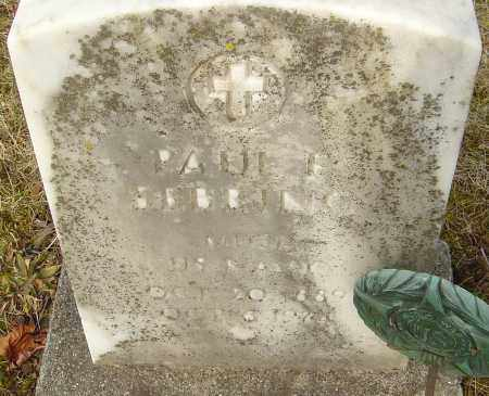 SEBRING, PAUL F - Franklin County, Ohio | PAUL F SEBRING - Ohio Gravestone Photos