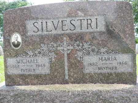 SILVESTRI, MICHAEL - Franklin County, Ohio | MICHAEL SILVESTRI - Ohio Gravestone Photos