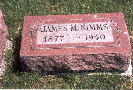 SIMMS, JAMES M. - Franklin County, Ohio | JAMES M. SIMMS - Ohio Gravestone Photos
