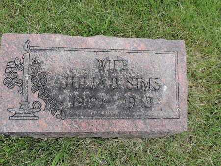 SIMS, JULIA B. - Franklin County, Ohio | JULIA B. SIMS - Ohio Gravestone Photos