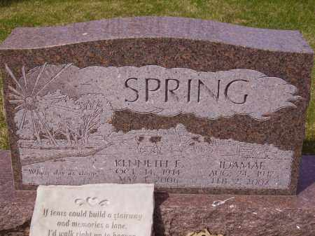 SPRING, IDAMAE - Franklin County, Ohio | IDAMAE SPRING - Ohio Gravestone Photos