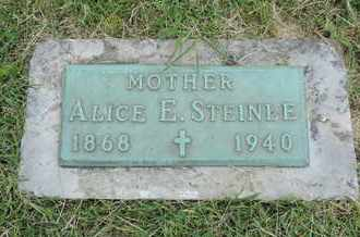 STEINLE, ALICE E. - Franklin County, Ohio | ALICE E. STEINLE - Ohio Gravestone Photos