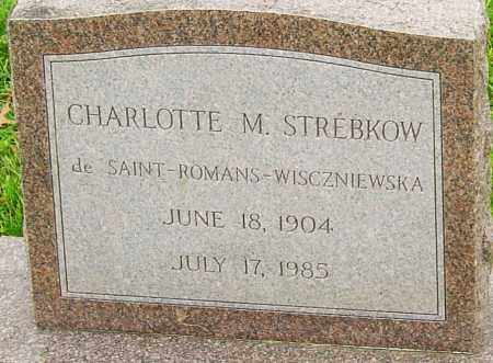 STREBKOW, CHARLOTTE - Franklin County, Ohio | CHARLOTTE STREBKOW - Ohio Gravestone Photos