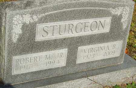 STURGEON, ROBERT - Franklin County, Ohio | ROBERT STURGEON - Ohio Gravestone Photos