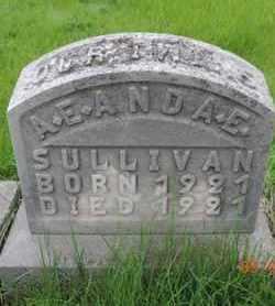 SULLIVAN, A. E. - Franklin County, Ohio | A. E. SULLIVAN - Ohio Gravestone Photos