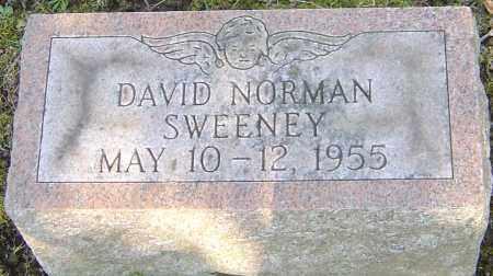 SWEENEY, DAVID NORMAN - Franklin County, Ohio | DAVID NORMAN SWEENEY - Ohio Gravestone Photos