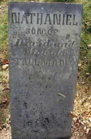 TALLMAN, NATHANIEL - Franklin County, Ohio | NATHANIEL TALLMAN - Ohio Gravestone Photos