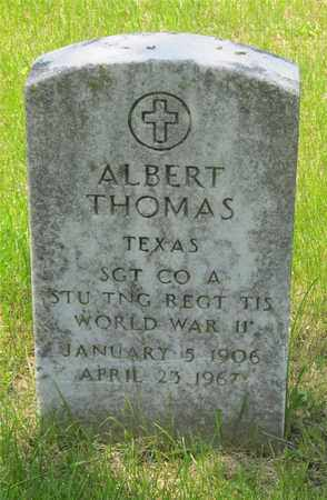 THOMAS, ALBERT - Franklin County, Ohio | ALBERT THOMAS - Ohio Gravestone Photos