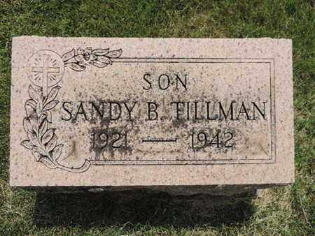TILLMAN, SANDY B. - Franklin County, Ohio   SANDY B. TILLMAN - Ohio Gravestone Photos