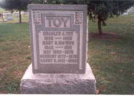 TOY, MARY R. - Franklin County, Ohio | MARY R. TOY - Ohio Gravestone Photos