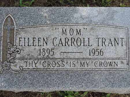 TRANT, EILEEN CARROLL - Franklin County, Ohio | EILEEN CARROLL TRANT - Ohio Gravestone Photos