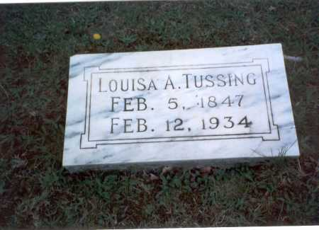 TUSSING, LOUISA A. - Franklin County, Ohio | LOUISA A. TUSSING - Ohio Gravestone Photos