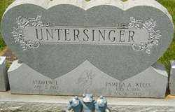 WELLS UNTERSINGER, PAMELA - Franklin County, Ohio | PAMELA WELLS UNTERSINGER - Ohio Gravestone Photos