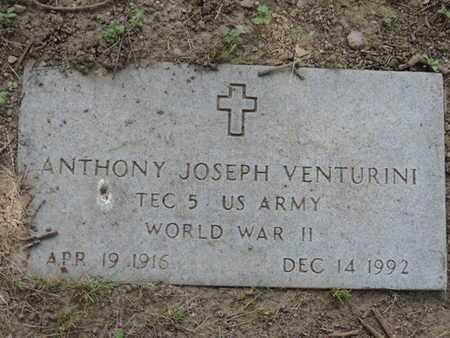 VENTURINI, ANTHONY JOSEPH - Franklin County, Ohio | ANTHONY JOSEPH VENTURINI - Ohio Gravestone Photos