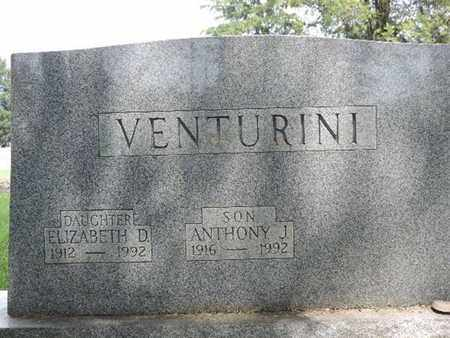 VENTURINI, ELIZABETH D. - Franklin County, Ohio | ELIZABETH D. VENTURINI - Ohio Gravestone Photos