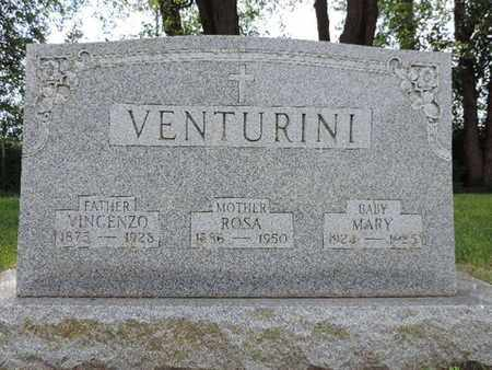 VENTURINI, VINCENZO - Franklin County, Ohio | VINCENZO VENTURINI - Ohio Gravestone Photos