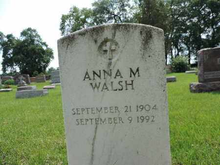 WALSH, ANNA M. - Franklin County, Ohio | ANNA M. WALSH - Ohio Gravestone Photos