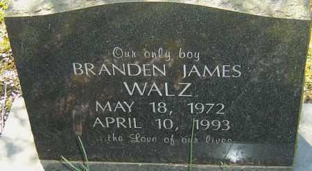WALZ, BRANDEN JAMES - Franklin County, Ohio | BRANDEN JAMES WALZ - Ohio Gravestone Photos