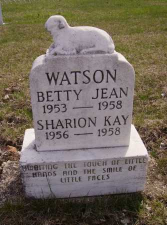 WATSON, BETTY JEAN - Franklin County, Ohio | BETTY JEAN WATSON - Ohio Gravestone Photos