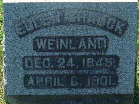 SHAUCK WEINLAND, ELLEN - Franklin County, Ohio | ELLEN SHAUCK WEINLAND - Ohio Gravestone Photos