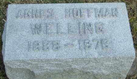WELLING, AGNES - Franklin County, Ohio | AGNES WELLING - Ohio Gravestone Photos