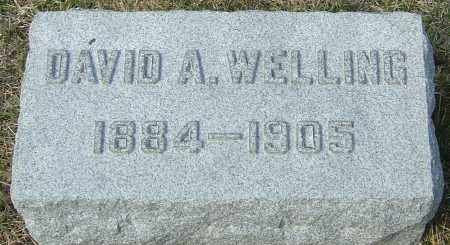 WELLING, DAVID A - Franklin County, Ohio | DAVID A WELLING - Ohio Gravestone Photos