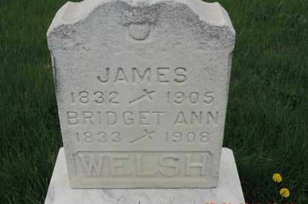 WELSH, BRIDGET ANN - Franklin County, Ohio | BRIDGET ANN WELSH - Ohio Gravestone Photos